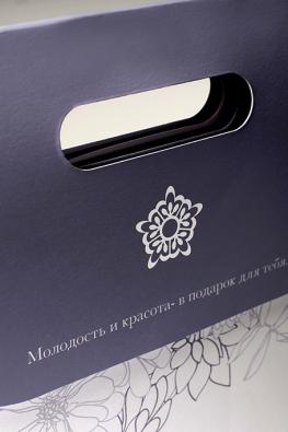 Бумажный пакет с прорубными ручками Aizen
