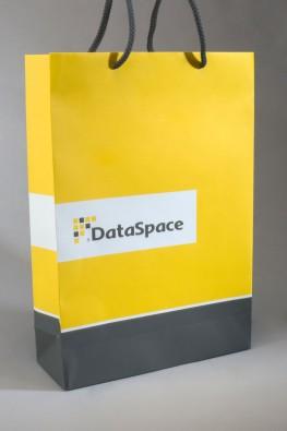 """Бумажный пакет с логотипом """"DataSpace"""""""