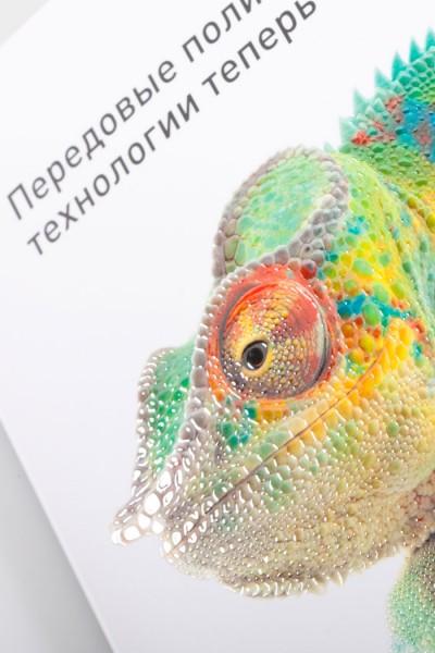 UV лакирование в тематическом буклете типографии EGF (Еврографика) – EGF.RU