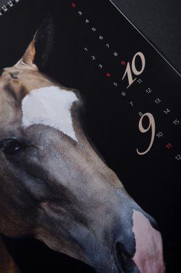Настенный перекидной календарь СтудФарм