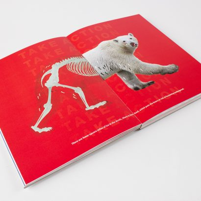 полиграфия, книги, полиграфические изделия, дизайн, книжный дизайн, дизайнер полиграфист, типография, офсетная печать, изготовление корешка, буклет, инфографика