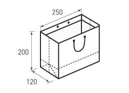 Горизонтальный бумажный пакет Г250x200x120