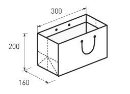 Горизонтальный бумажный пакет Г300x200x160