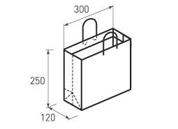 Горизонтальный бумажный пакет Г300x250x120