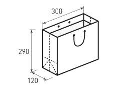 Горизонтальный бумажный пакет Г300x290x120