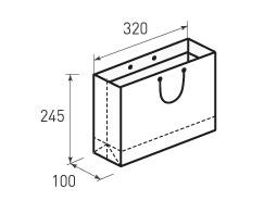 Горизонтальный бумажный пакет Г320x245x100