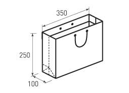 Горизонтальный бумажный пакет Г350x250x100