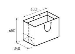 Горизонтальный бумажный пакет Г600x450x340