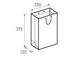Вертикальный бумажный пакет В220x375x120