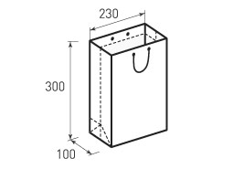 Вертикальный бумажный пакет В230x300x100