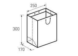 Вертикальный бумажный пакет В250x300x170
