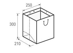 Вертикальный бумажный пакет В250x300x210