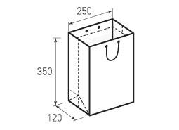 Вертикальный бумажный пакет В250x350x120