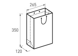 Вертикальный бумажный пакет В265x350x120