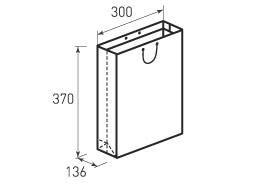 Вертикальный бумажный пакет В300x370x136