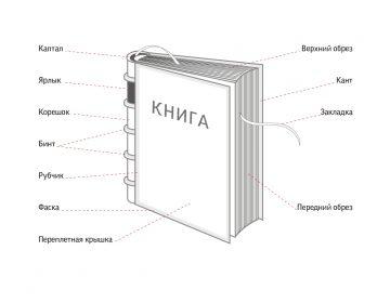 """""""Анатомия"""" книги"""