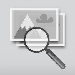 Подбор изображений в фотобанке