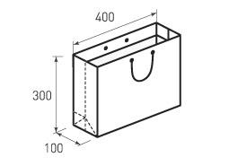 Горизонтальный бумажный пакет G400x300x100