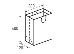 Вертикальный бумажный пакет V300x400x120