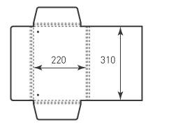 Папка ФВ 220x310x14 резинки