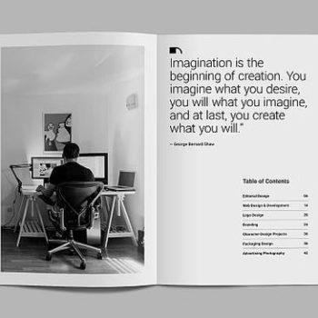 vidy-broshur2